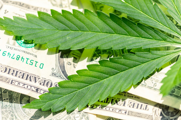 Hemp Commission Receives $100,000.00